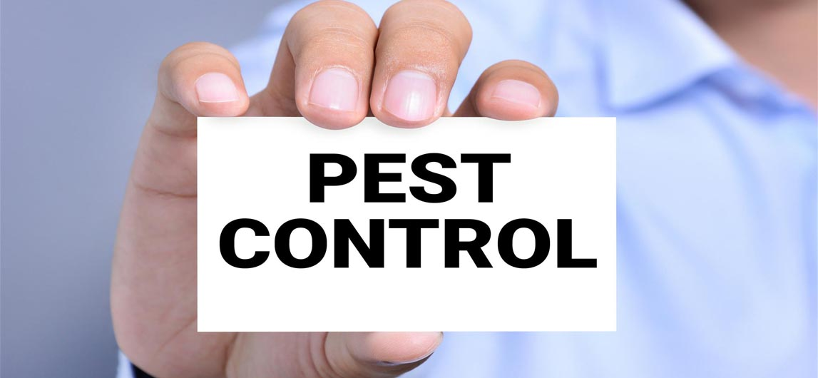 Image result for Pest control company